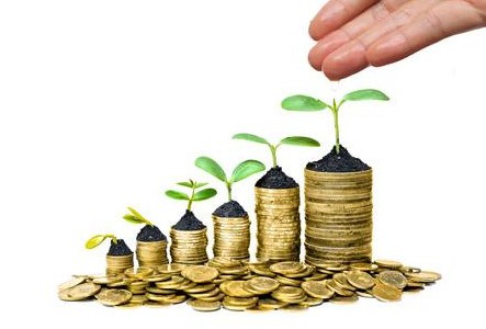 About Investor Relation